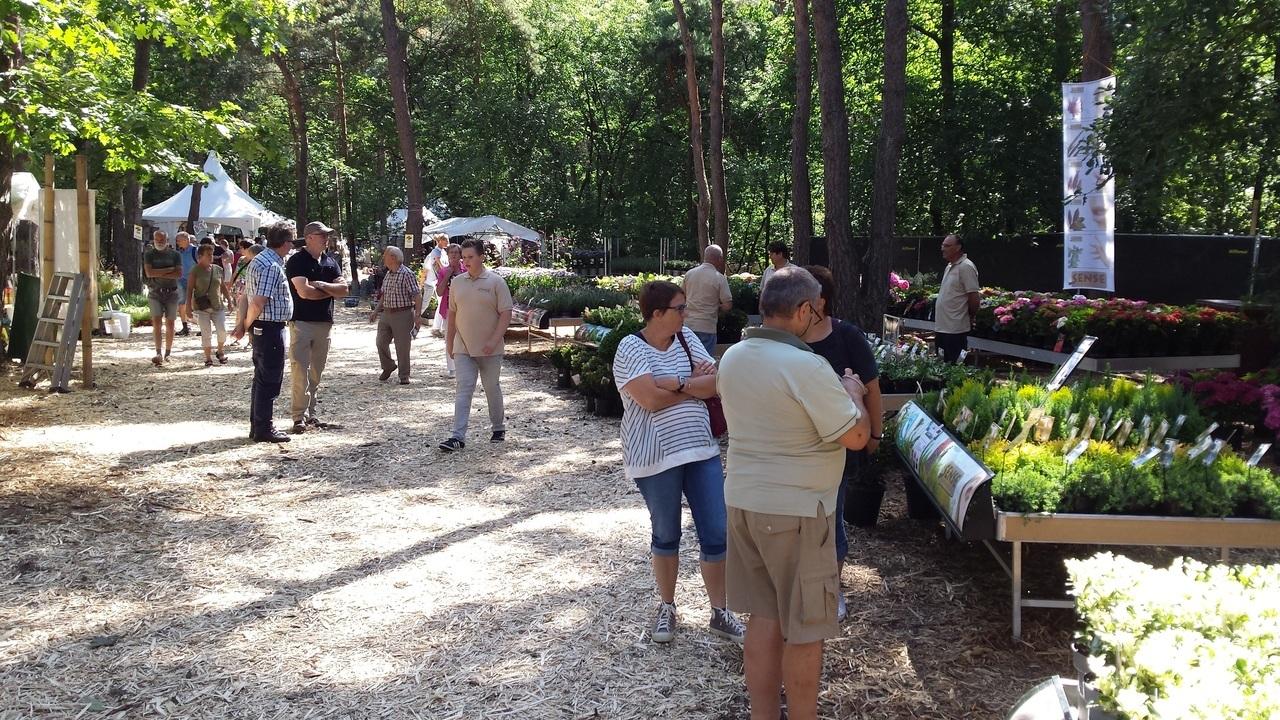 Bloem En Tuin : Festival bloem en tuin to be held at gulberg estate eindhoven news