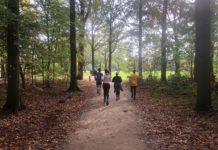 parkrun, eindhoven, running, sports