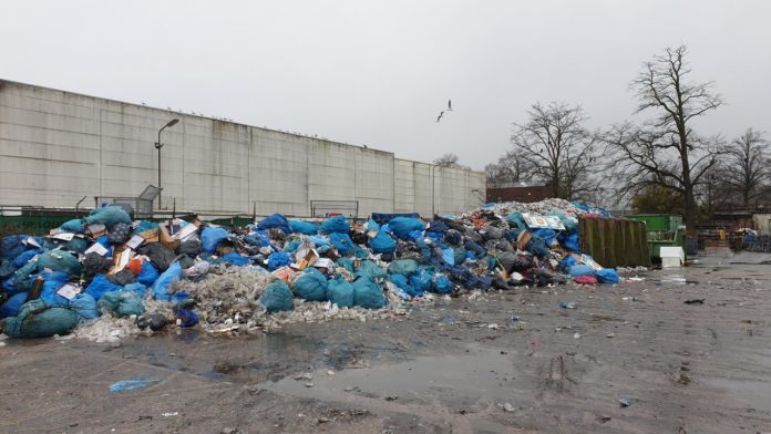 Less garbage on streets due to cancelled Carnival