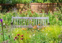 Biodiversity, garden