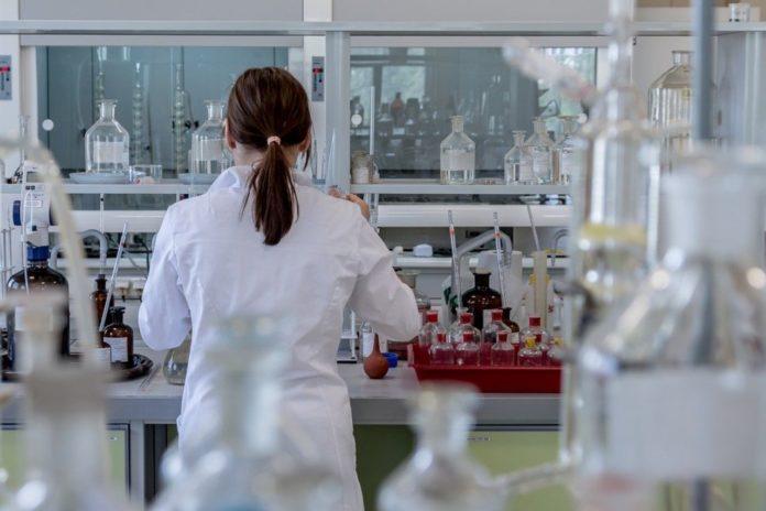 Major pharmacists interested in Dutch COVID-19 antibody