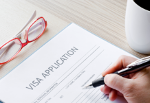 Orientation year visa in the Netherlands