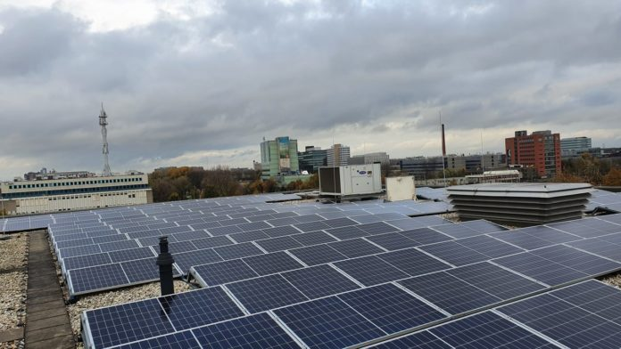 sustainability, green energy, solar panels