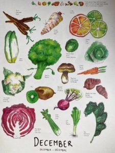 Western europe seasonal produce in December