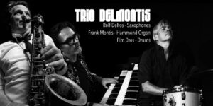 Enjoy the Blue Note Club Sessions with Trio Delmontis live from the Muziekgebouw Eindhoven