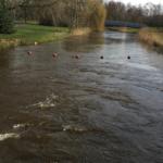 Dommel waterboards dams