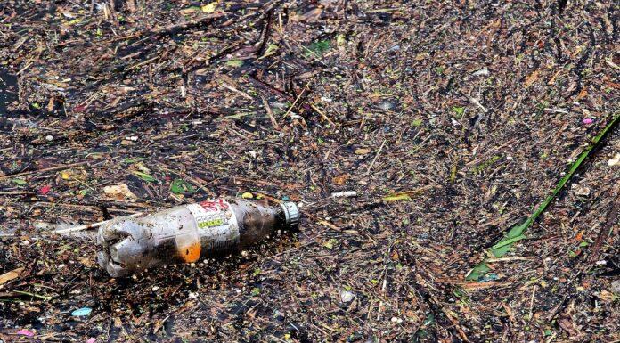 Pollution plastic waste