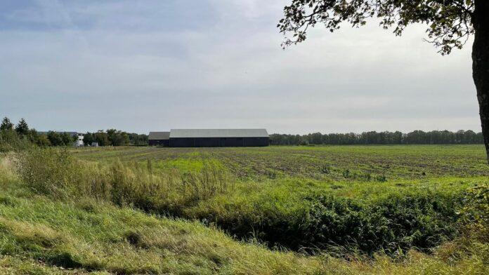 Landscape Nuenen